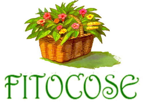 Fitocose.it